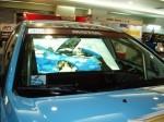 car-show-rear-pro-film