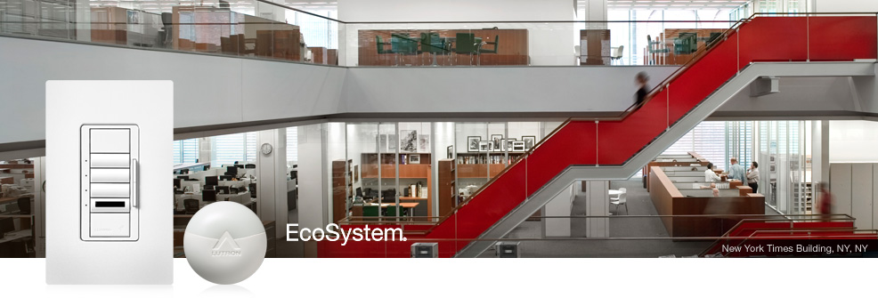 EcoSym_Overview.jpg